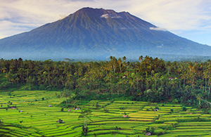 indonesia-tours