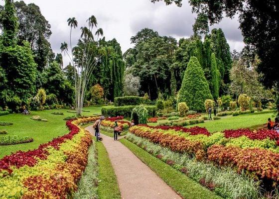 Peridenya Gardens