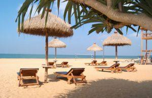 8 Days Sri Lanka Tour Packages