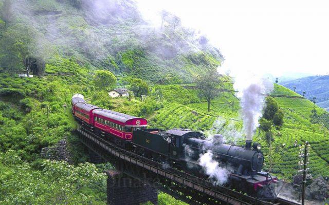 Sri Lanka Local Tour