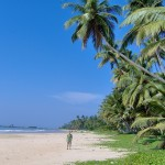 how-to-get-to-arugam-bay