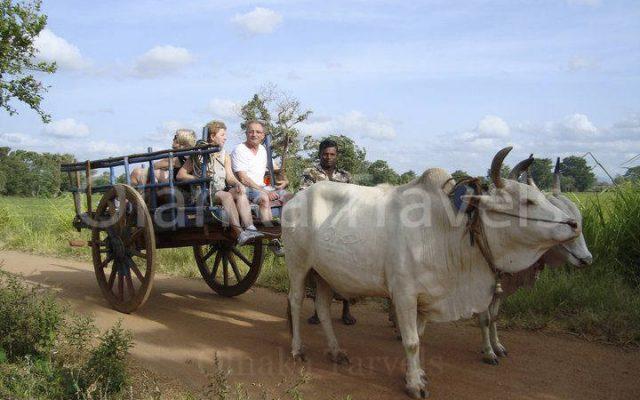 Olanka travels sri lanka tours