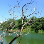 places-to-visit-in-batticaloa-150x150