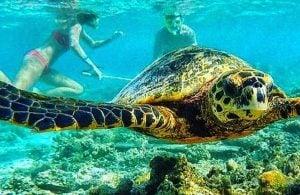 Maldives Tour Packages - Adaaran Prestige Vadoo