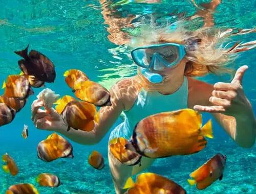 Maldives Tour Package Underwater Snorkeling