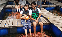 sri lanka itineraries package12 days Fish therapy at Bentota