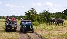 sri lanka itineraries package 12 days polonnaruwa