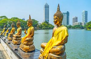 Sri Lanka Quarantine Travel Packages