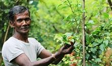 Sri Lanka Spice Garden - Sri Lanka Holiday Package