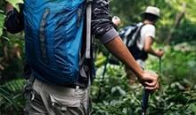 sri lanka itineraries 12 days sinharaja trekking-and-hiking